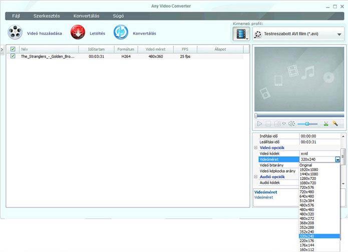 Any Video Converter beállítások