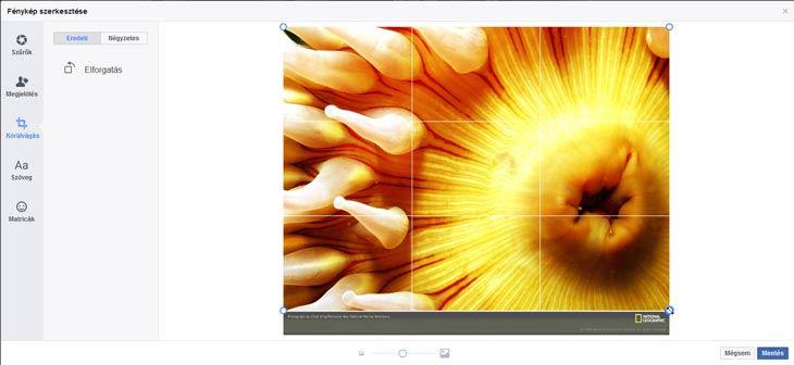 facebook fénykép körülvágás