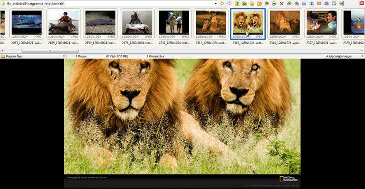 FastStone Image Viewer teljes képernyő