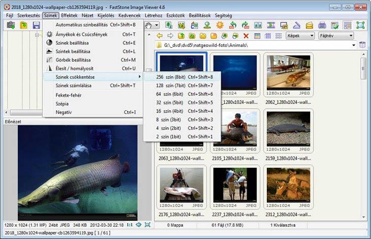 FastStone Image Viewer szín beállítások