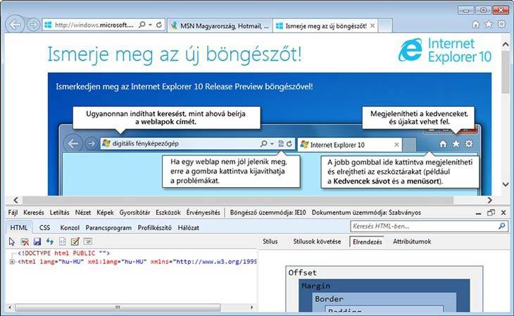 Internet Explorer 10 html
