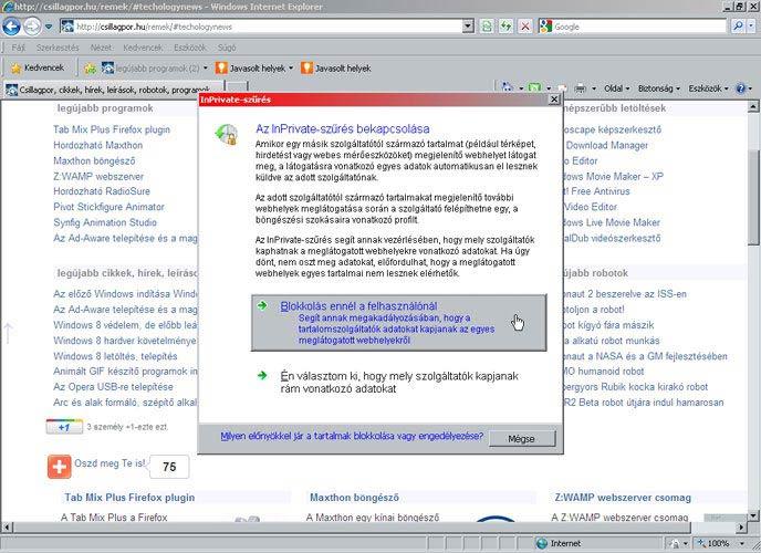 Internet Explorer 8 szűrés